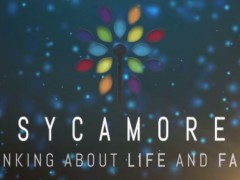 Sycamore: a new programme of evangelisation and catechesis for use in parishes, chaplaincies, schools and other settings